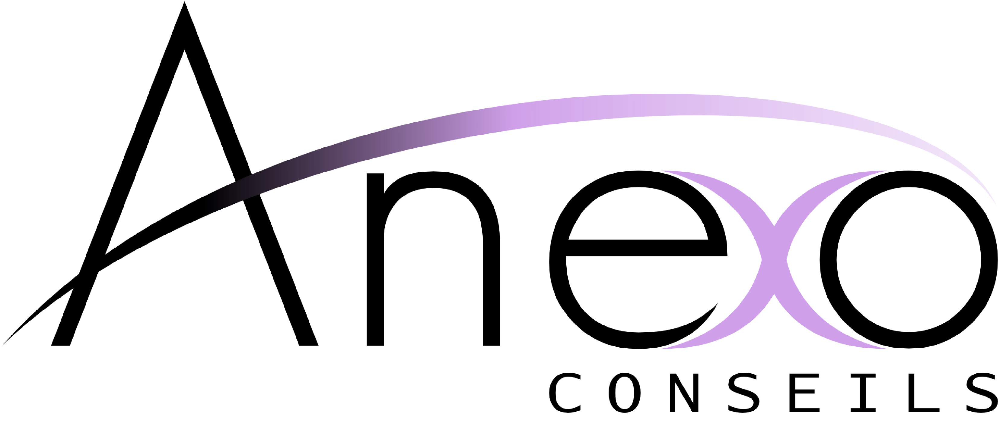 Anexo Conseils